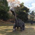 貝殻山市民憩いの森「岡山県花の見所としてもよく知られています」