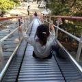 太陽の丘公園「恐竜のすべり台が迫力満点」